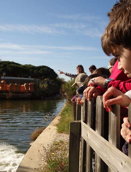 Salt marches history (guided tour for children)