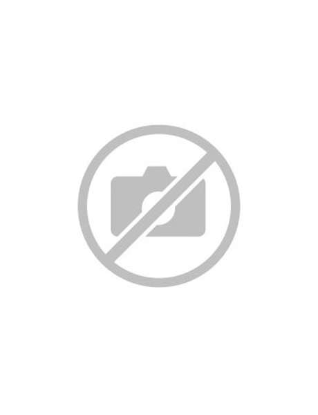 Sled - Downhill evening with lighting