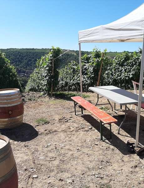 Brunch(di)vin au Domaine Gérard