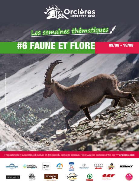 """Semaine à thème """"Faune & Flore"""""""