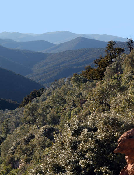 Visite guidée : Les Maures, roches et paysages