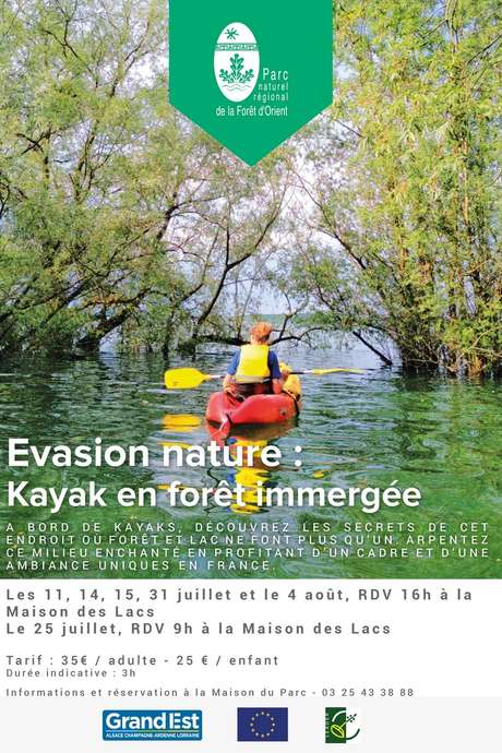 Balade Kayak dans la forêt immergée