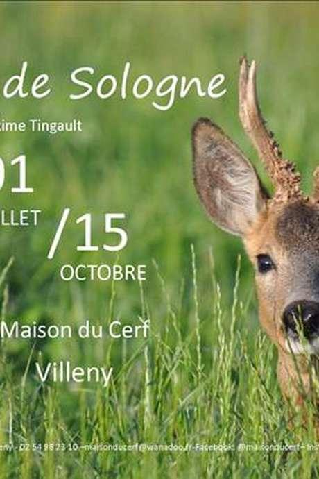 Exposition : Instant de Sologne