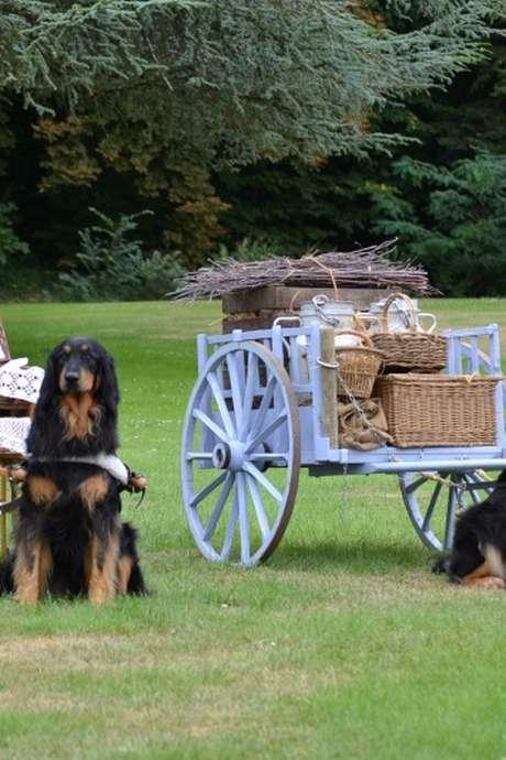 Journée des attelages canins (confirmé)