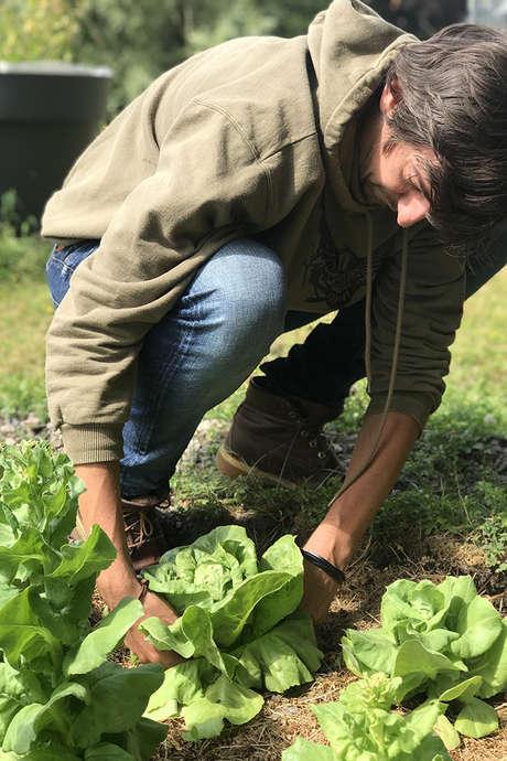 Autour de la permaculture