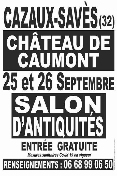 SALON D'ANTIQUITÉS  AU CHÂTEAU DE CAUMONT