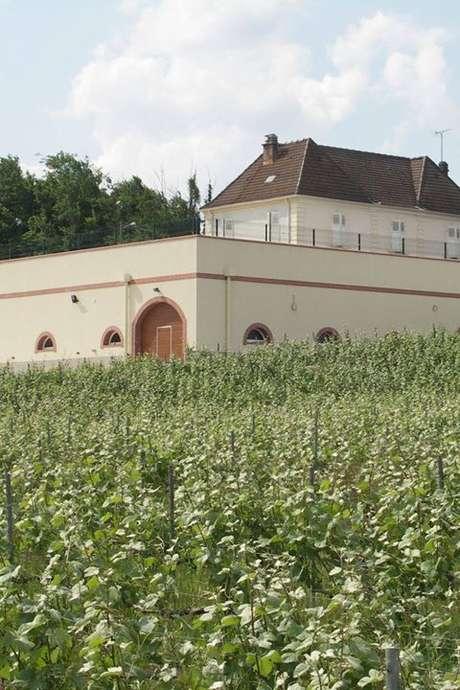 Portes Ouvertes Champagne Leguillette-Romelot