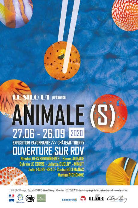 """Exposition à la MAFA """"ANIMALE(S) 2"""""""
