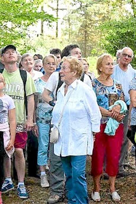 Balade découverte en forêt de Loudéac