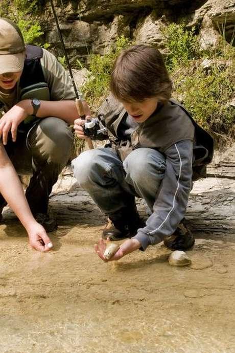 Pêche aux leurres