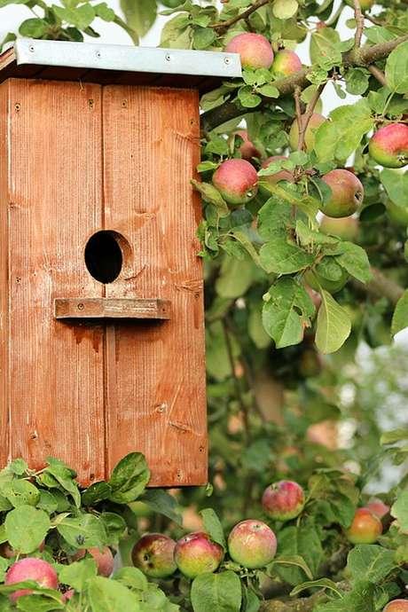 Fabrication d'une maison à oiseaux en osier