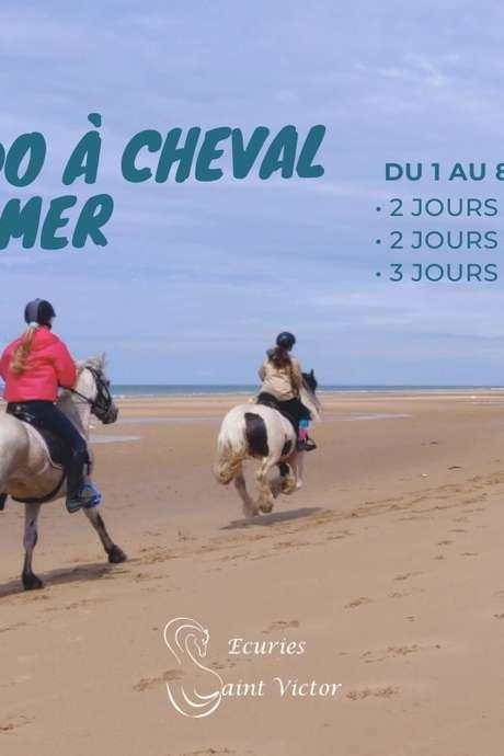 Randonnée à cheval à la mer en Normandie