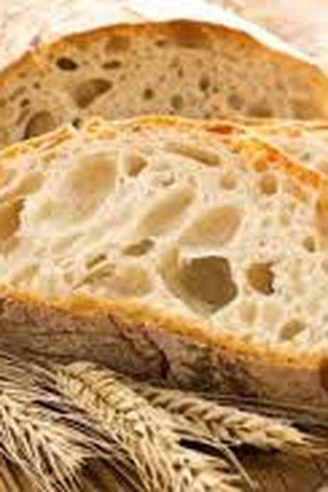 Le Monde agricole : paysans boulangers bio