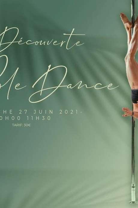 STAGE DECOUVERTE DE POLE DANCE