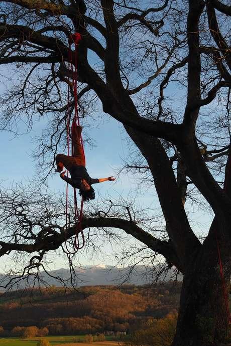 """Spectacle """"Conversation avec un arbre"""" - Cie Rouge Éléa"""