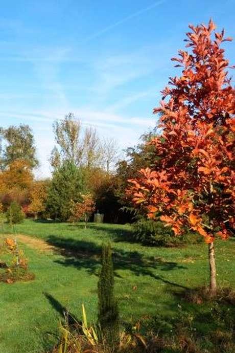 Portes ouvertes dans les Jardins : Jardin de l'Eau Vive
