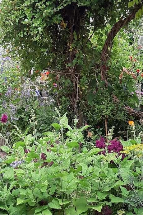 Portes ouvertes dans les jardins : Jardin de Maëlys