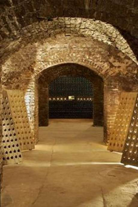 Caves Ouvertes - Champagne Charles MIGNON