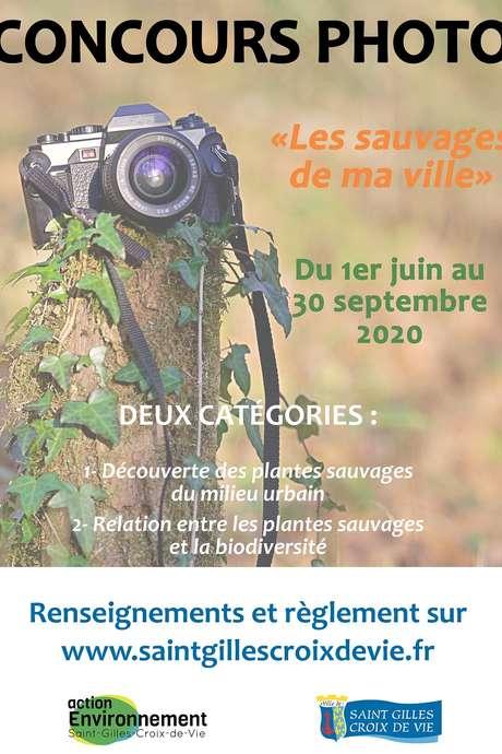 CONCOURS PHOTO - LES SAUVAGES DE MA VILLE
