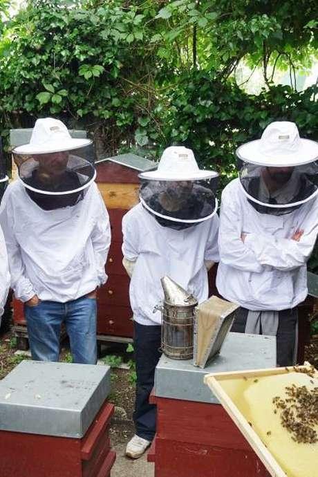 Cours d'initiation à l'apiculture à Zone Sensible