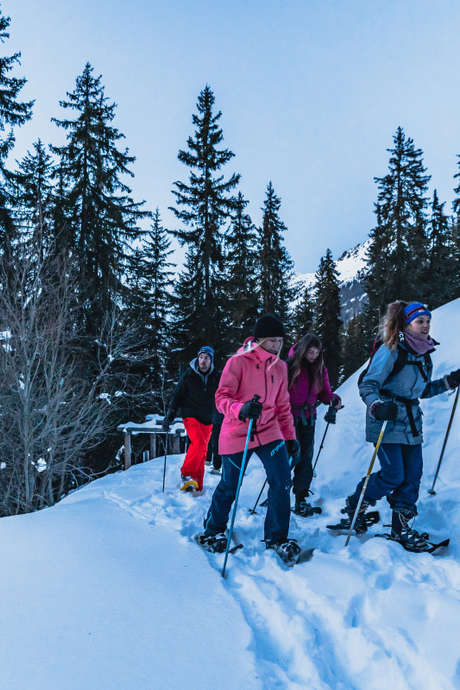 Themed snowshoe trek - The forest in Winter