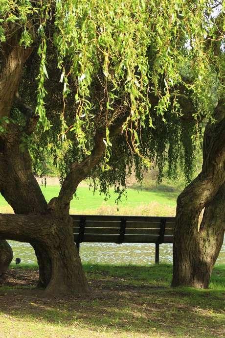Piscine éphémère au parc Georges Valbon