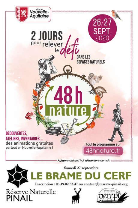 48h nature : le brame du cerf