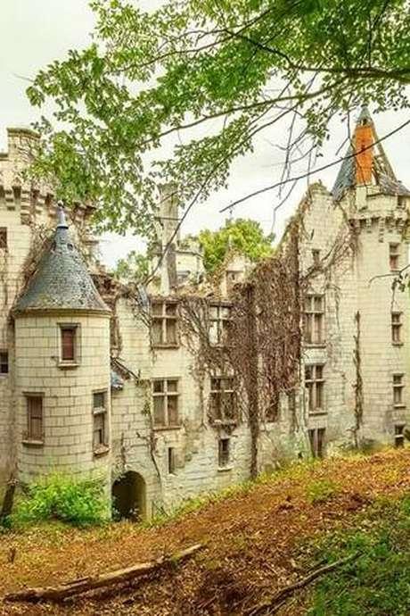 Le château de Remeneuil
