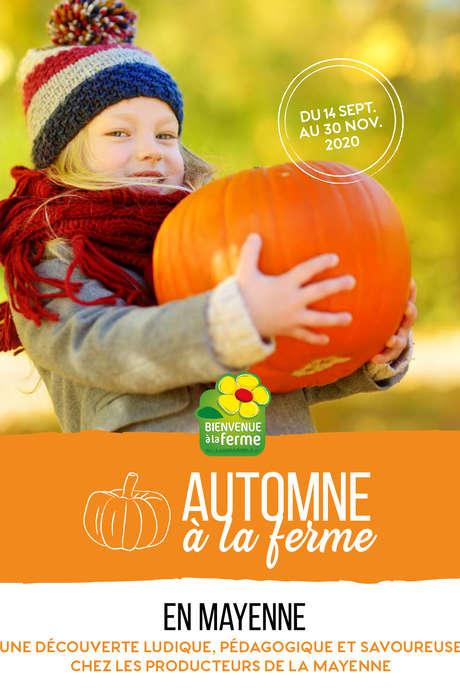 AUTOMNE À LA FERME | LA CUEILLETTE DU VERGER