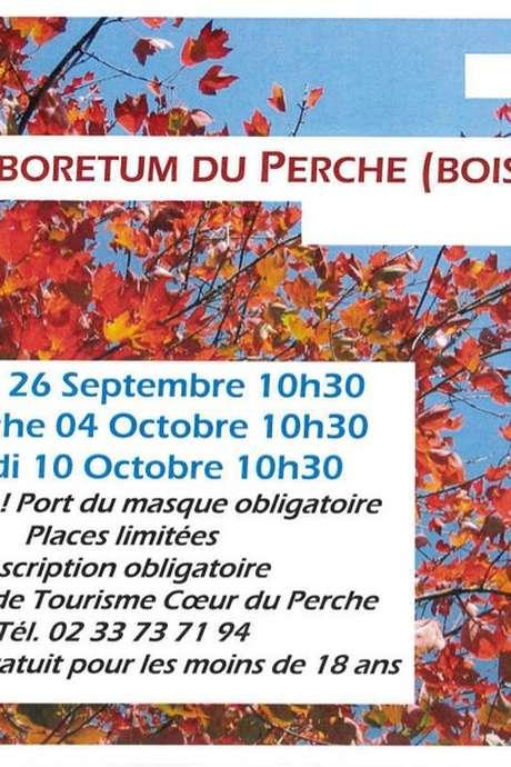 Visite guidée de l'arboretum du Perche (Boiscorde)