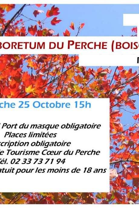 ANNULATION - Visite guidée de l'arboretum du Perche (Boiscorde)
