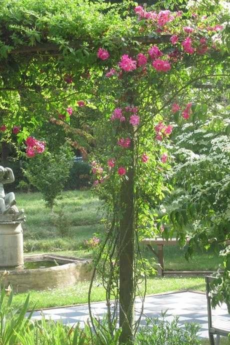 Visite du jardin botanique de la Petite Rochelle