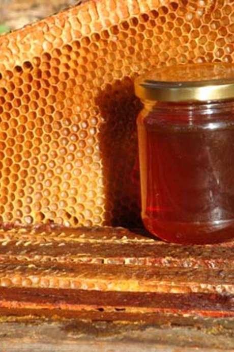 Miel des ruchers du Bas-Quercy