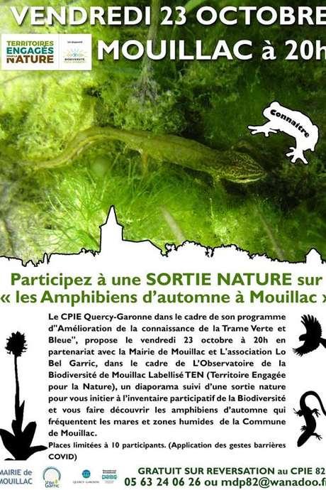 """Sortie nature sur """"Les Amphibiens d'automne à Mouillac"""""""