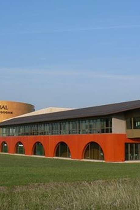 Veuve Ambal - Dégustation et visite du site de production ventes des vins 2021
