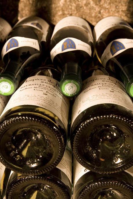 Vente des Vins Dégustation Terroirs de Bourgogne