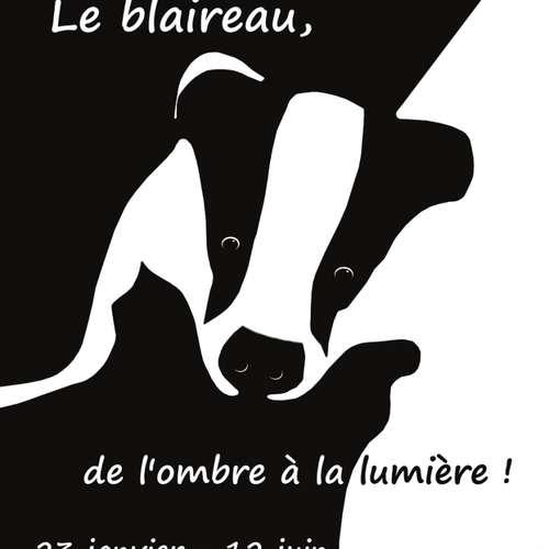 Exposition : « Le blaireau, de l'ombre à la lumière »