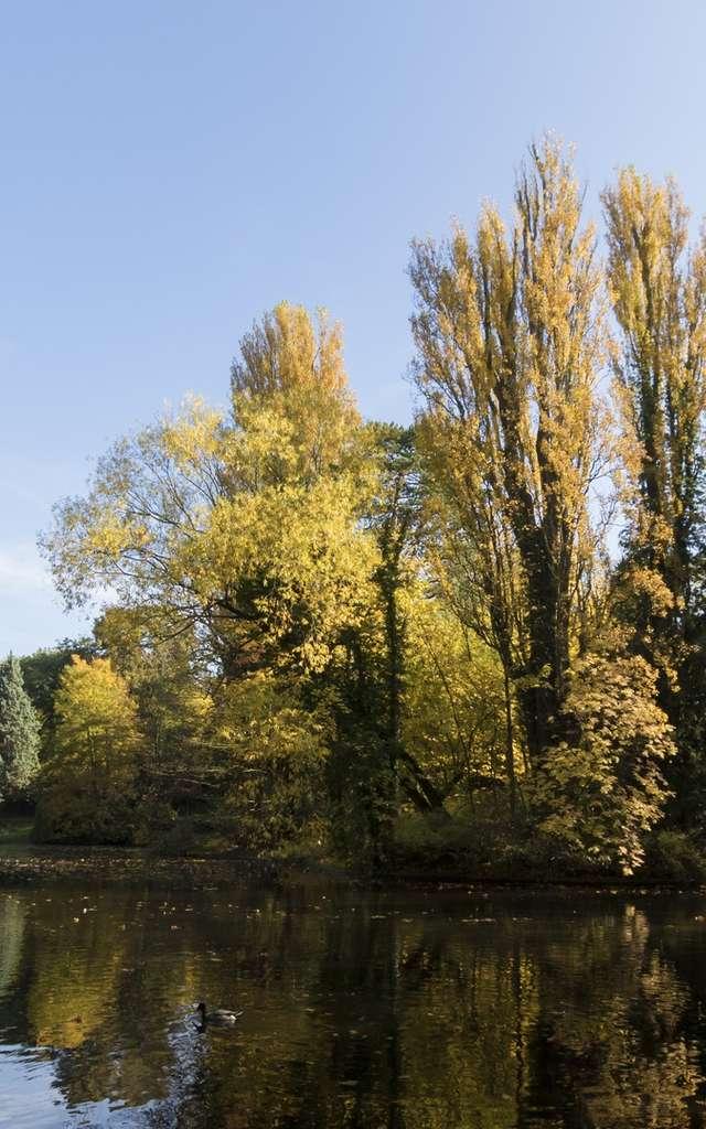 Le Parc Charles Bertin