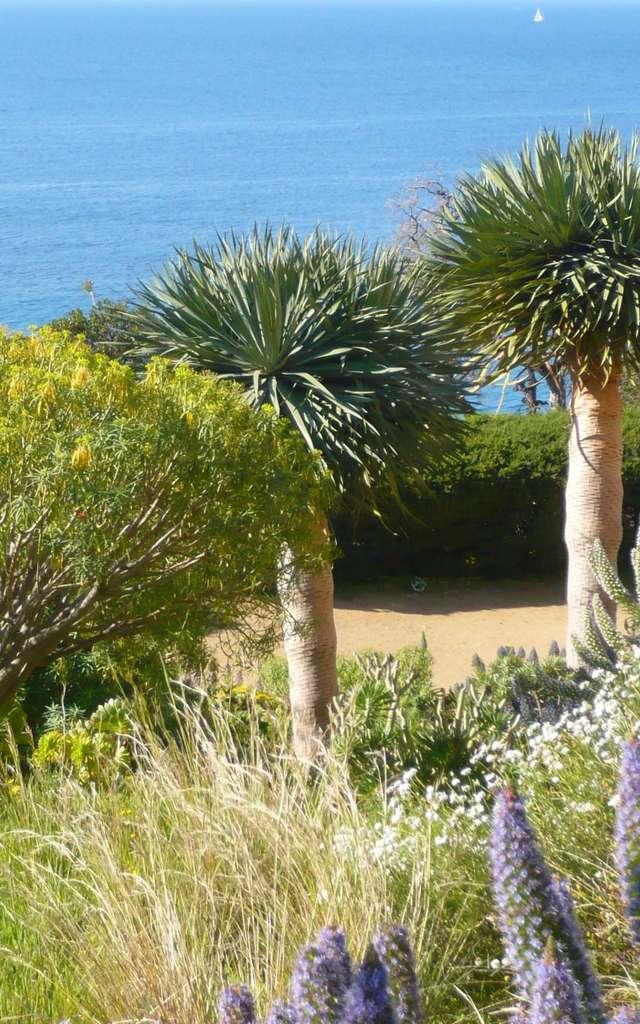 Domaine du Rayol, The Mediterranean Garden