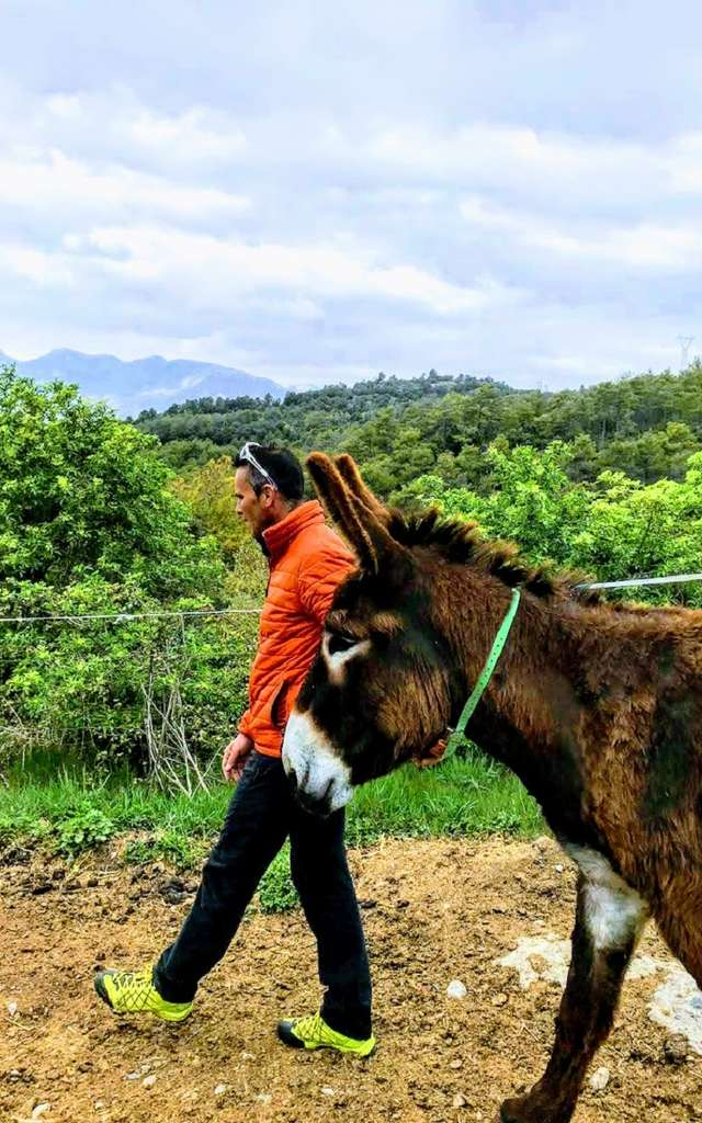 Au pas de l'âne Catalan