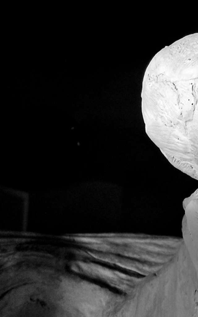 Exhibition: Metamorphoses - Sophie Nuncie