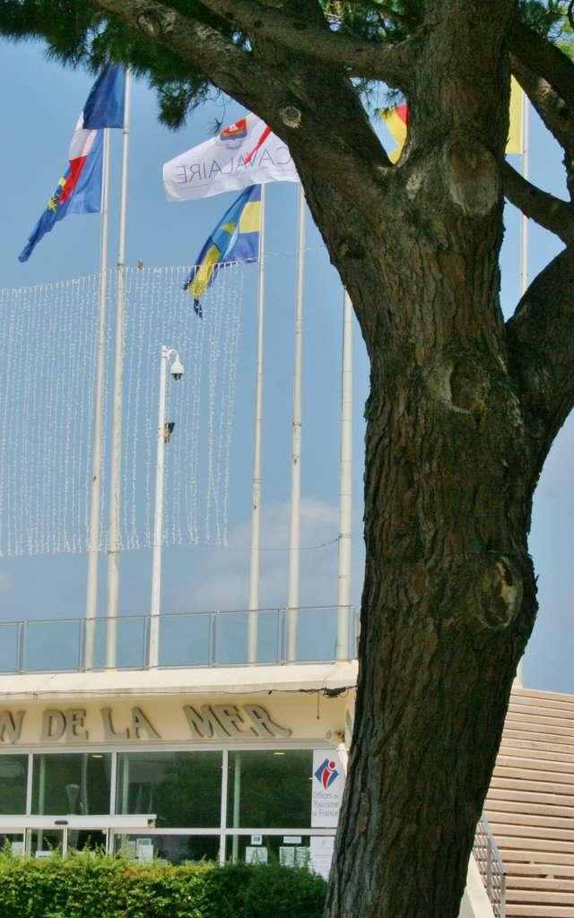 Office de Tourisme de Cavalaire sur Mer