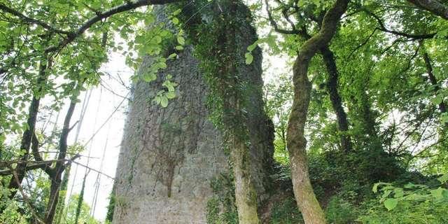 Eglise de St Maurice d'Echazeaux - Ruines de Mt-Didier