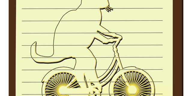 Les vélos rigolos
