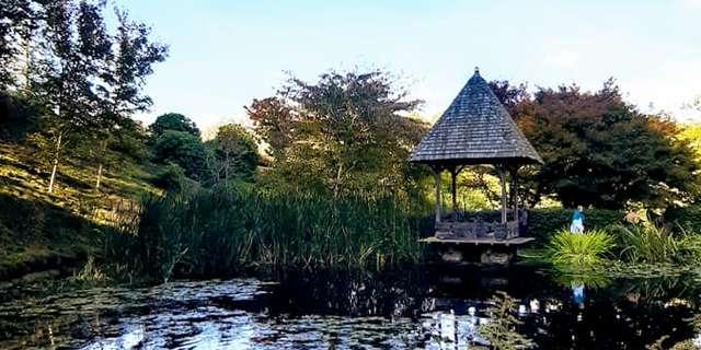 Arboretum de la Sédelle
