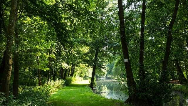 Le parc d'Homblières