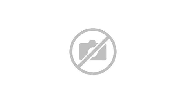 Le bourg d'Allas et le château du Roch