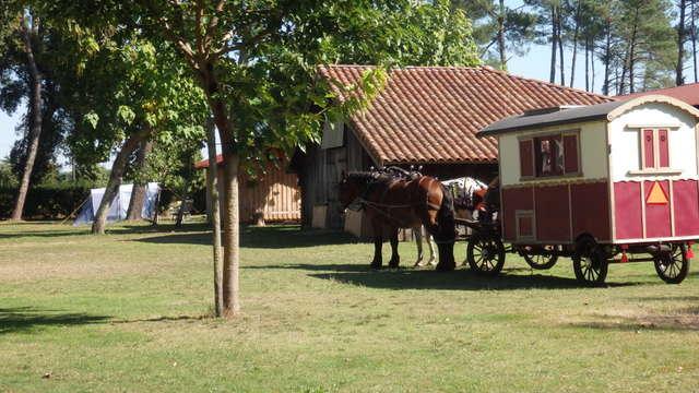 Camping Lassalle