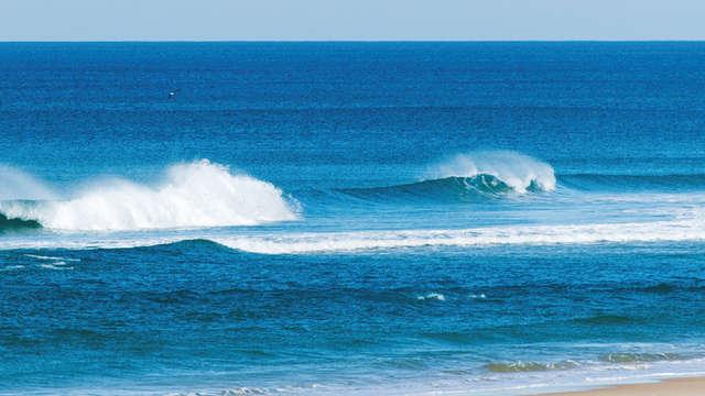 Pura Vida Surf Shop et Surf School
