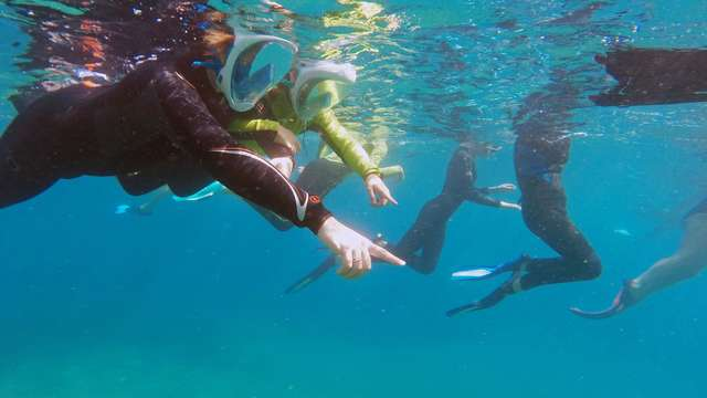 Randonnées Palme Masque & Tuba - Plage Hawaï